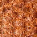 Baby Crock Castano-7P free PVC fabric