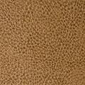 illusion mushroom-leather-grain