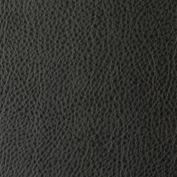Image Gallery Leather Upholstery